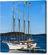 Tall Sailboat In Acadia Canvas Print
