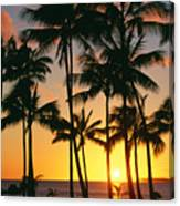 Tall Sunset Palms Canvas Print