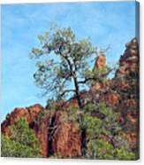 Tall Trees And Rocky Spires Canvas Print