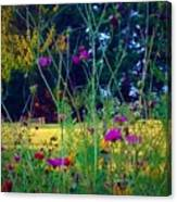 Tall Wisphy Flowers Of Pink Canvas Print