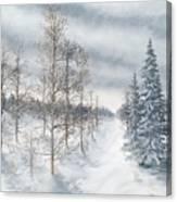 Tamarack Swamp In Winter 2  Canvas Print