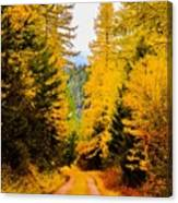 Tamarack Trail Canvas Print