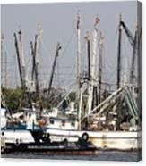 Tampa Shrimp Boats Canvas Print