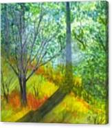 Tannis Woods Canvas Print