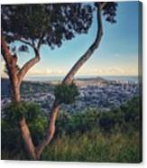 Tantalus Views Canvas Print