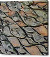 Tanzania Tree - Kenya Canvas Print