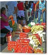Tapachula 8 Canvas Print