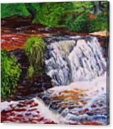 Taqua Falls Canvas Print