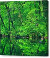 Tar River Reflection Canvas Print