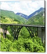 Tara River, Montenegro Canvas Print