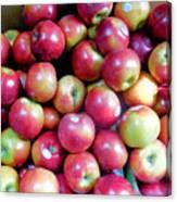 Tasty Fresh Apples 1 Canvas Print