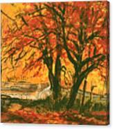 Taughannock Park Trumansburg New York Canvas Print