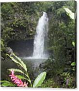 Taveuni, Tavoro Waterfall Canvas Print