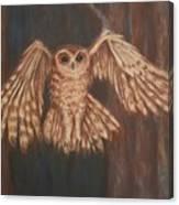 Tawny Owl In Flight Canvas Print