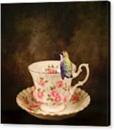 Tea Time With A Hummingbird Canvas Print