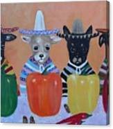Teacup Chihuahuas In Mexico Canvas Print
