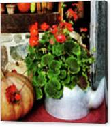 Teapot Filled With Geraniums Canvas Print