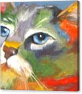 Technicolor Tabby Canvas Print