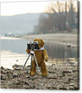 Teddy Bear Taking Pictures With An Old Camera By The Riverside Canvas Print