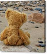 Teddy On A Beach Canvas Print