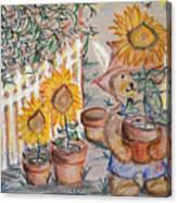 Teddy's Sunshine Canvas Print