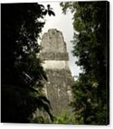 Temple In The Trees Tikal Guatemala Canvas Print