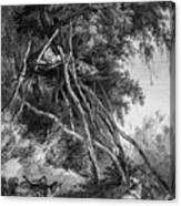 Temporary Tree Dwelling Canvas Print