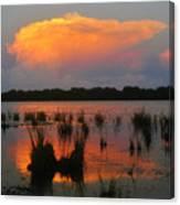 Ten Thousand Islands Florida Canvas Print