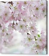 Tender Spring Pastels Canvas Print
