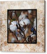 Tennessee Cotton II Photo Square Canvas Print