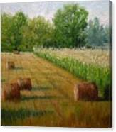 Tennessee Hay And Corn Fields Canvas Print