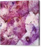 Tenorrhaphies Relation  Id 16098-001445-06030 Canvas Print