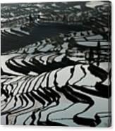 Terrace Notes Canvas Print