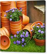 Terracotta Flower Pots Canvas Print