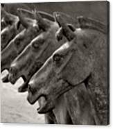 Terracotta Horses Canvas Print