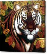 Tessas Tiger Canvas Print