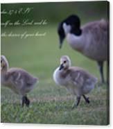 Psalm 37 Canvas Print