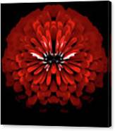 Test Red Abstract Flower 3 Canvas Print