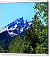 Teton Picture Perfect Canvas Print