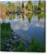 Teton Reflection In Schwabacher Landing Canvas Print