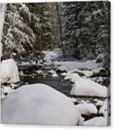 Teton River In Winter Canvas Print