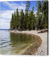 Teton Shore Canvas Print