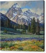 Teton Splendor Canvas Print
