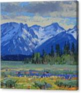 Teton Summer Canvas Print