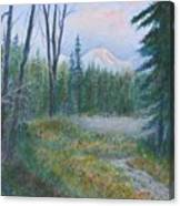 Teton Valley Canvas Print