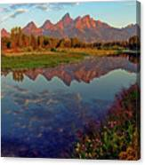 Teton Wildflowers Canvas Print