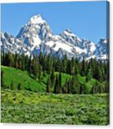 Tetons In Spring Canvas Print