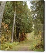 Tettegouche State Park Canvas Print