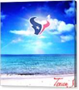Texan Shine Canvas Print