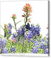 Texas Bluebonnets And Red Indian Paintbrushes Canvas Print